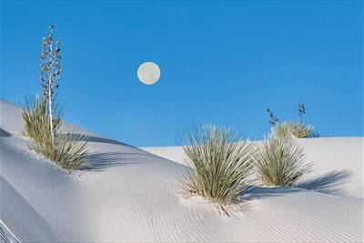 Full Moon at White Sands